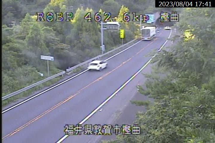 国道8号 敦賀市 田結付近